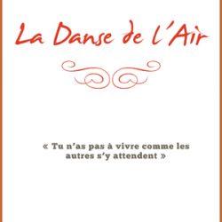 la danse de l'air Damien Fauché avis