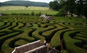 maze changeons