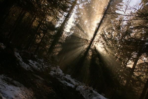 hiver lumière changeons