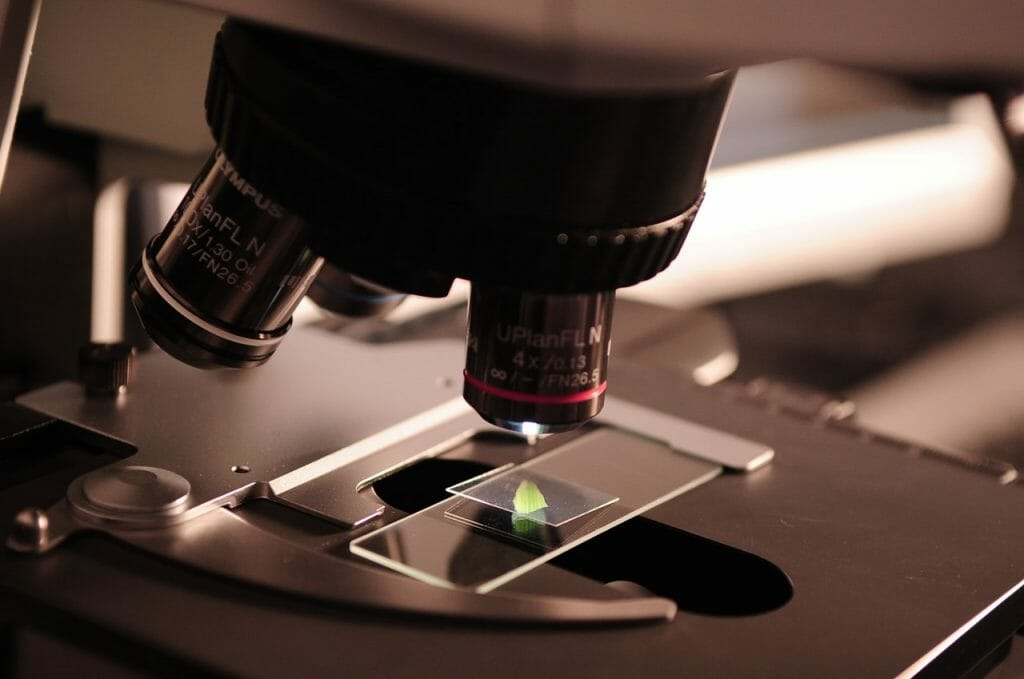 microscope - changeons