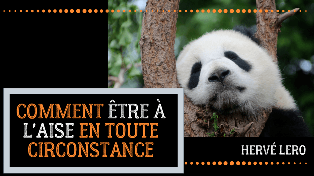 panda à l'aise Hervé Lero